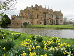 UK - Oxfordshire - Broughton - View of moated Broughton Castle (JulesFoto) Tags: uk england castle broughton oxfordshire daffodils manorhouse moatedcastle broughtoncastle