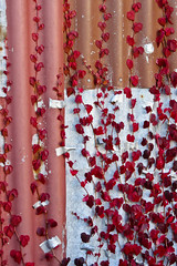 All Taped Up (Jocey K) Tags: red newzealand christchurch plants building wall cafe tape nz lyttelton iorn