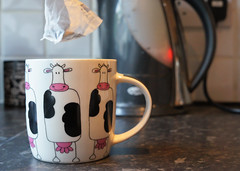A tea ADAY ... (Captain Red Beard) Tags: morning cup kitchen cow tea mug brew teabag aday cuppa nex 5n sigma30mmemount
