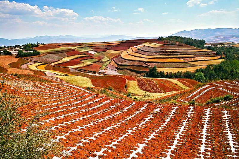 Tierra Roja de Dongchuan