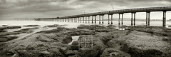 OB Pier (HAPA John) Tags: ocean california longexposure morning panorama white black beach water monochrome fog clouds sunrise 50mm pier nikon rocks sandiego ninja surreal pacificocean oceanbeach nikkor f18 tidepools stitched nodal nd110 d300s hapajohn