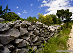 Stone_fence [Explored] (Voss-Nilsen) Tags: travel trees tree nature stone digital rural canon fence landscape geotagged photography photo europa europe flickr stones natur fences croatia explore sten tre stein gjerde kroatia hrvatska steiner dalmatia landskap trr geografi naturen stener geotagget flickrexplore explored digitalfoto reisebilder steingjerde landlig reiseliv steingjerder gjerder reisebilde trrsteingjerde trrsteingjerder vossnilsen