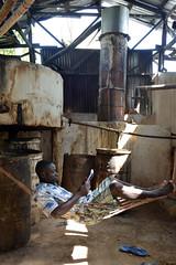 slow distillation...slow life... (luca.gargano) Tags: travel haiti caribbean distillation gargano pignon potstill ayiti lucagargano ayti