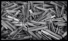 Antique clothespins (ThroughMyEyes_JKM) Tags: bw antique clothespins