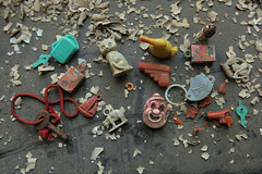 Tiny Toy Collection (abandonednyc) Tags: nyc abandoned bathroom hallway queens urbanexploration curbed guano urbex pigeonshit creedmoorstatehospital