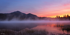 6 Million Acres ([Chris Tennant]) Tags: statepark mist ny newyork mountains reflection nature fog sunrise reeds dawn pond glow blueline upstate adirondacks wilderness tranquil whiteface adk connery 6millionacres 5dmkii christennantphotography