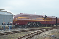 RAILFEST: Duchess of Hamilton (CrazyRupes) Tags: york museum train yorkshire rail loco locomotive nationalrailmuseum trainset 6229 duchessofhamilton naitional railfest2012