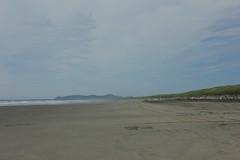 Up the Beach (blackthorne56) Tags: wood shells beach sand sandy peter driftwood beaches drift iredale shepwreck