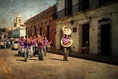 La ltima meloda (Manuel Gayoso) Tags: textura mexico banda lila oaxaca tuba cortejo metales cruzadas sepelio