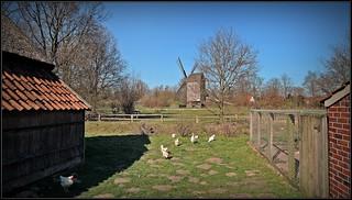 Cloppenburg - open air museum - lower saxony