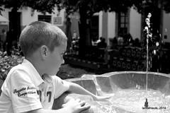 Nio en fuente (Landahlauts) Tags: boy blackandwhite bw primavera blancoynegro water fountain kid sevilla andaluca agua eau wasser fuente seville andalucia chico andalusia nio andalusien sville andalousie andalusie andaluz aguapotable siviglia barriodesantacruz alandalus  andaluzia andaluzja sewilla andaluzio  biancoinero        plazadedoaelvira        andalouzia andalusiya   ishbiliya fujifilmxpro1  nf endls andalusi capitaldeandalucia