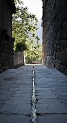 Shigar Fort: A path and a creek (hradcanska) Tags: pakistan creek fort cobblestone pathway shigar gilgitbaltistan