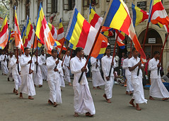 Flag of Buddhism (IMG_3640b) (Dennis Candy) Tags: street man colour heritage festival walking flag culture buddhism parade srilanka ceylon procession tradition serendipity pageant hinduism kandy perahera dhamma serendib serendip esala