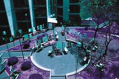 UAM-X 4/5 (The Daniel Garca) Tags: film lomo lomography purple phototgraphy lomochrome