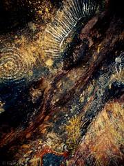 "Aboriginal rock art Uluru • <a style=""font-size:0.8em;"" href=""http://www.flickr.com/photos/44919156@N00/26744401121/"" target=""_blank"">View on Flickr</a>"