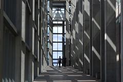 Musée des beaux-arts du Canada, Ottawa (Fransois) Tags: light canada glass museum lumière ottawa musée finearts nationalgalleryofcanada beauxarts verrière