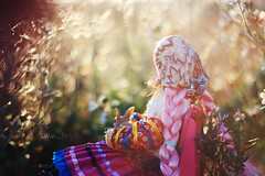 Memories of places where we once lived (uve_triple) Tags: pink macro primavera mexico blog spring doll purple post bokeh frida groove frhling junplanning 16scale jdoll jdollpicassosteast leskawaiis jdollpicassostwest