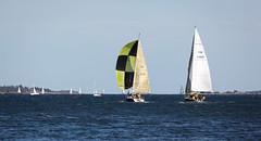 Blux ja Tyyne (Antti Tassberg) Tags: sea cup race espoo suomi boat sailing yacht regatta meri kes vene sailingboat whc westhouse purjevene purjehdus tyyne mellsten haukilahti blux