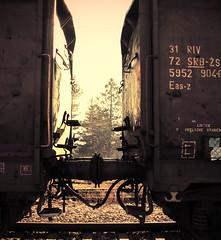 Detail from railways (Sappho et amicae) Tags: detail railways eljkagavrilovi