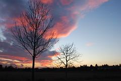 O heilige Dreieinigkeit (amras_de) Tags: sunset evening abend zonsondergang tramonto sonnenuntergang prdosol avond ocaso coucherdesoleil ilta sera solnedgang vespre apus zalazaksunca kveld solnedgng aften vecer vesper auringonlasku soumrak kvll soleglad aksam seara pikeseloojang vakaras zpadslnka riets saulelydis ocs vespero zachdslonca soloccidens scurata vespere dayset escureixito forenicht