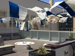 IMG_3070 (Thacher Gallery at the University of San Francisco) Tags: contemporaryart artinstallation environmentalart usfca sculptureterrace thachergallery worldsinthemaking christinaconklin