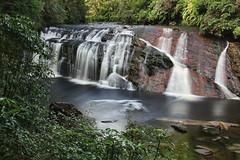 Coal Creek Falls (flying-leap) Tags: newzealand canon bush long exposure nz southisland westcoast 18200mm 60d canon60d
