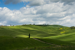 Val d'Orcia (rwscholte) Tags: oldglass tuscany landscape rwscholte reinscholte 55mm k5 pentax toscana