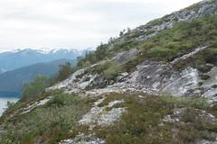DSC08266 (Rune Venes) Tags: norway no sognogfjordane