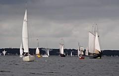 Kieler Woche (♥ ♥ ♥ flickrsprotte♥ ♥ ♥) Tags: wasser regatta ostsee kiel sampo kielerförde 2016 kielerwoche segelschiffe flickrsprotte