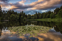 tarn hows (alastairgraham19) Tags: landscape cumbria clouds sony sky sunset nature a77 outdoor lakedistrict water lake
