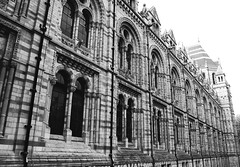 (nic lawrance) Tags: windows light blackandwhite brick london texture lines architecture contrast dark perspective arches shape naturalhistorymuseum