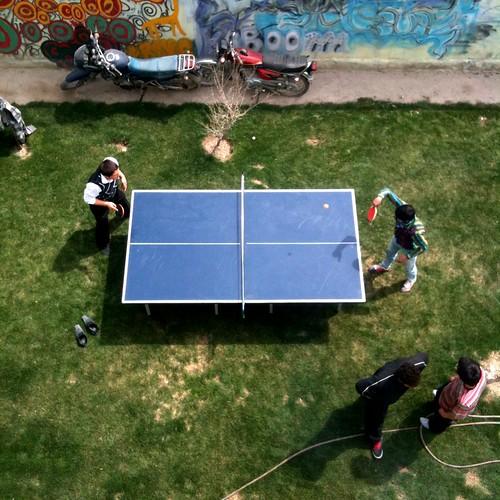 Backyard ping pong
