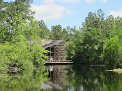 The Pinecote Pavilion Viewed from Across the Pond (bluerim) Tags: mississippi mississippistateuniversity euinefayjones picayune pinecotepavilion crosbyarboretum