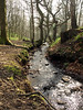 Woodland water (Mr Grimesdale) Tags: waterfall lancashire parbold fairyglen stevewallace mrgrimesdale