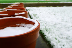 Nieve de abril // [April's snow] (Walimai.photo) Tags: snow nieve abril april lx5