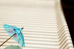 Here comes the sun (glukorizon) Tags: blue light shadow plant flower paper licht blauw sink parasol blinds papier schaduw striped bloem shading aanrecht odt luxaflex lamellen gestreept zonwering goldenrules ourdailytopic
