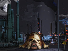 Silvester the Guard Dog (David Blackwell.) Tags: chimney dog moon night clouds stars factory guard silvester