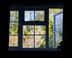 (drfugo) Tags: trees summer reflection window nature glass silhouette painting handle spring colours bokeh canon5d impressionist swirly blossum boredinmyroom helios44258mmf20 tookafilmversionbutmissedthefocus