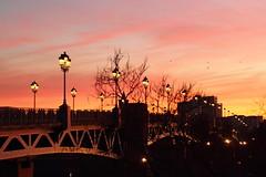 Pont St Pierre à Toulouse (Jordi.P) Tags: bridge sunset sky france rio canon river puente cloudy cel ciel cielo pont puestadesol redsky toulouse francia garonne stpierre coucherdesoleil fleuve riu cielorojo cielrouge
