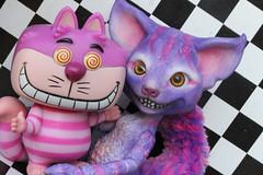 Cheshire Cats!