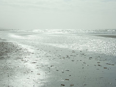 a long walk (henk hessel photography) Tags: light people beach nature silver landscape northsea footsteps ringexcellence