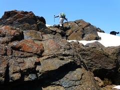 Rodman summits
