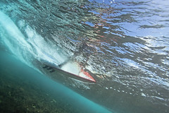 slide (bluewavechris) Tags: ocean sea water face coral fun hawaii surf underwater action surfer board maui foam surfboard reef swell fins skeg