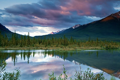 Vermillion at the Blue Hour (Ania.Photography) Tags: morning travel light sky lake canada mountains tree nature water pinetree clouds forest sunrise reflections landscape photography dawn alberta banff bluehour majestic idyllic tranquil scenics canadianrockies beautyinnature thepowerofnow