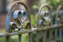 Blue, green and rust (PeterJ(back in July)) Tags: blue green netherlands fence rust utrecht dof bokeh fences olympus fenced zuiko lr haarzuilens rustyandcrusty bluerust hff m43 mft epl1 45mm18 fencefriday happyfencefriday fencedfriday frompeterj