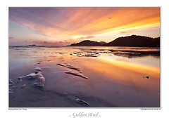 Golden Mud (Shunfa Teh) Tags: sunset reflection canon golden mud penang 9s ef1635 leefilter shunfa goldenmud 5d2 5dmii permatangdamarlaut shunfateh tehsoonhuat