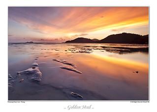 Golden Mud