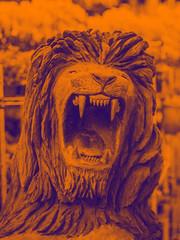 ROAAARRRRR! (Leonardo Martins) Tags: carnival sea brazil woman praia beach southamerica nature animal brasil riodejaneiro america mouth handicraft bay mar sand américa rj cidademaravilhosa bresil areia natureza mulher artesanato lion brasilien palm cristoredentor christtheredeemer copacabana tropical carnaval sugarloaf pãodeaçúcar boca roar 450 ipanema leão baía brésil sudamerica brasileira baíadeguanabara baiadeguanabara paodeacucar palmeira leao américadosul florestadatijuca baia brazilianwoman sudeste mulata rugido rio2016 regiãosudeste cidadedesãosebastiãodoriodejaneiro brasil2016 brazil2016 regiaosudeste rio450 cidadedesaosebastiaodoriodejaneiro