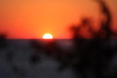IMG_6959 (sjj62) Tags: sunset seascape doorcounty sunsetting doorcountywi 40d ellisonbaywi ellisonbluffstatenaturalarea