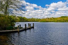 Blydenburgh County Park (willsdad48) Tags: travel lake landscape spring smithtown travelphotography suffolkcounty blydenburgcountypatk mayfujifilmx100t